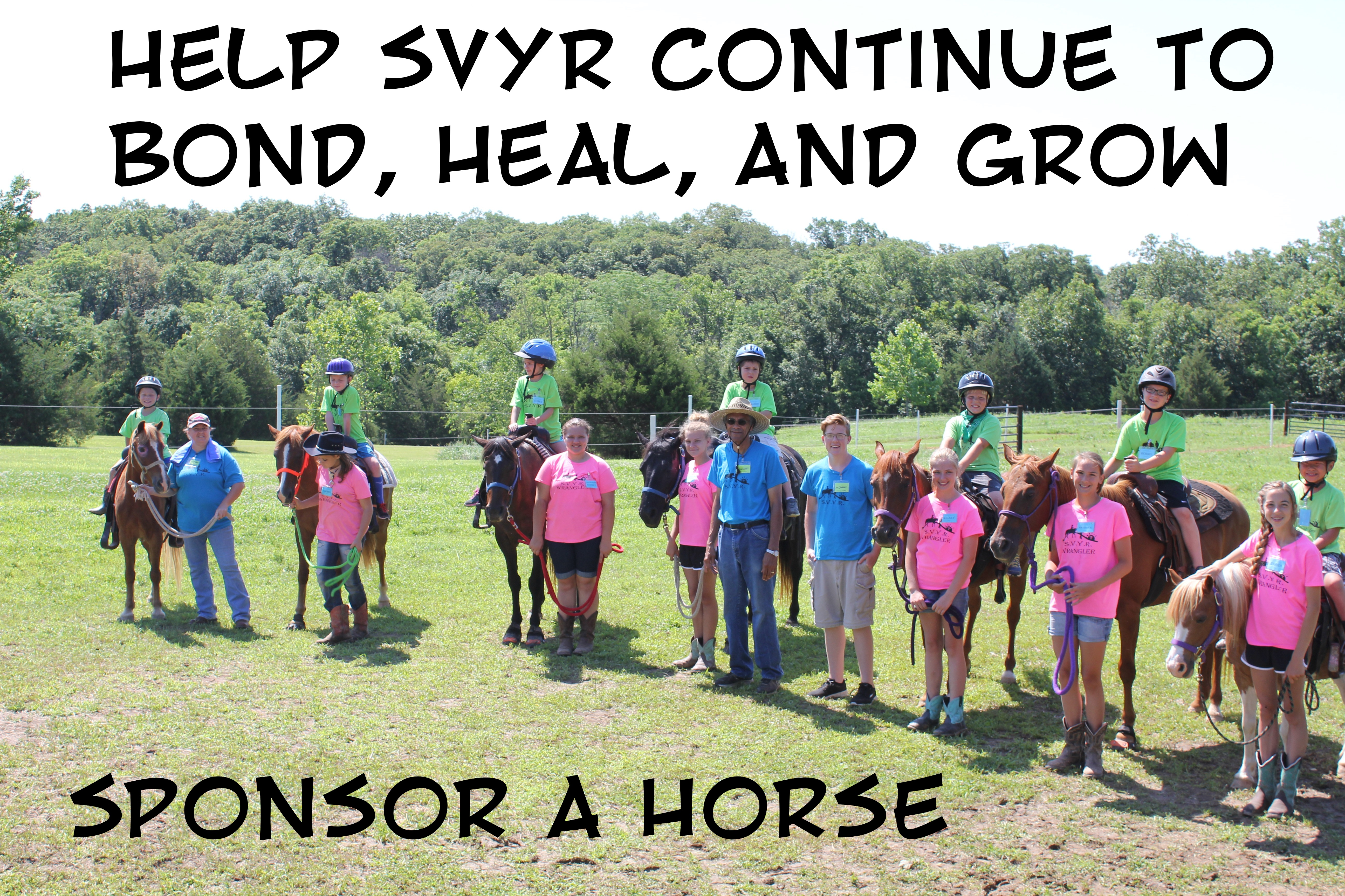 sponsor-a-horse